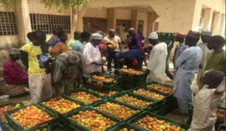 TEllforceblog: Photos: For the first time in 58 years, fresh tomatoes enters Lagos from Kano by RAIL