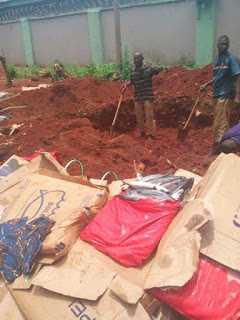 Photos: Nigeria Customs seized and buries 772 cartons of frozen fish allegedly worth over ?10 million