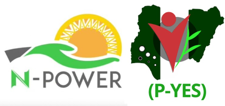 N-Power and P-Yes
