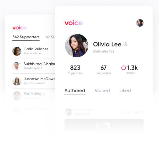 voice social media networking