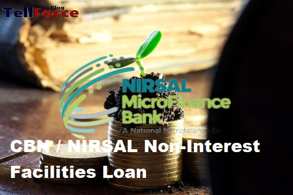 How To Apply For CBN NIRSAL Non Interest Facilities Loan