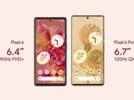 Google Pixel 6 series launched